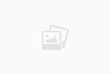 חשופית צהובה – Limacus flavus